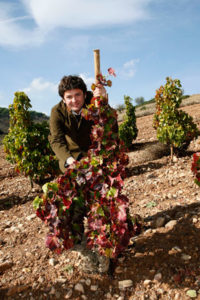 """Álvaro Palacios: """"Para llegar a los vinos sublimes, España debe ir más allá de las DO regionales"""""""